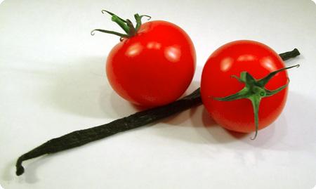 Tomate-Vanille